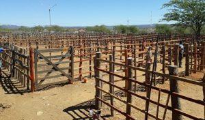 Feira do gado de Tabira segue sem previsão de volta