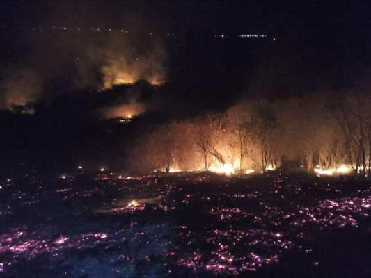Altas temperaturas causam mais incêndios em áreas do Pajeú