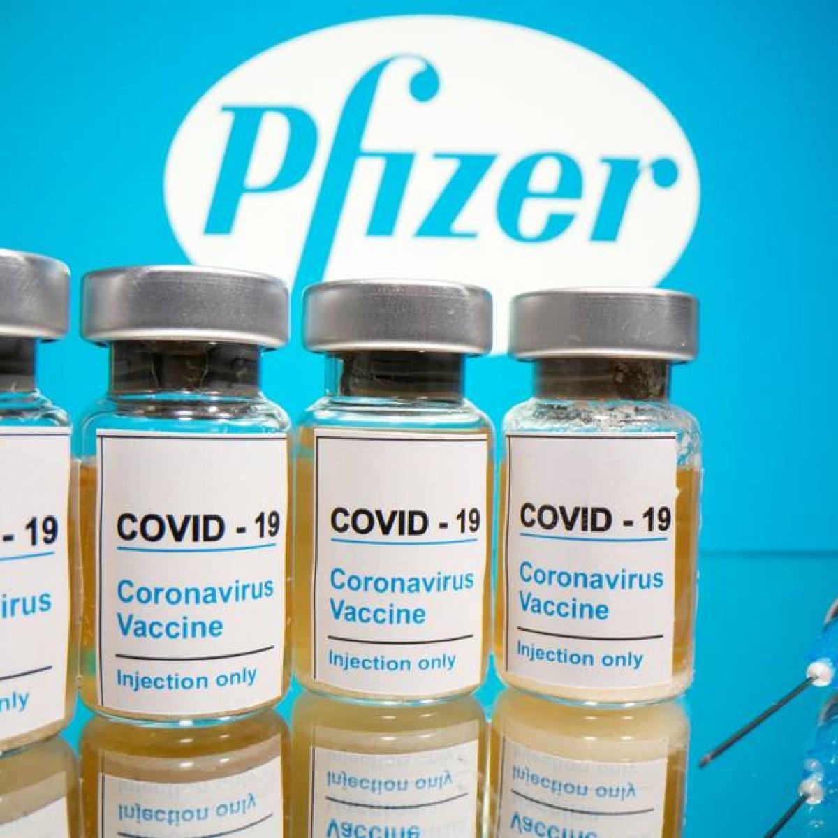 Anvisa e Pfizer tentam acordo em reunião nesta quarta (30) sobre registro da vacina