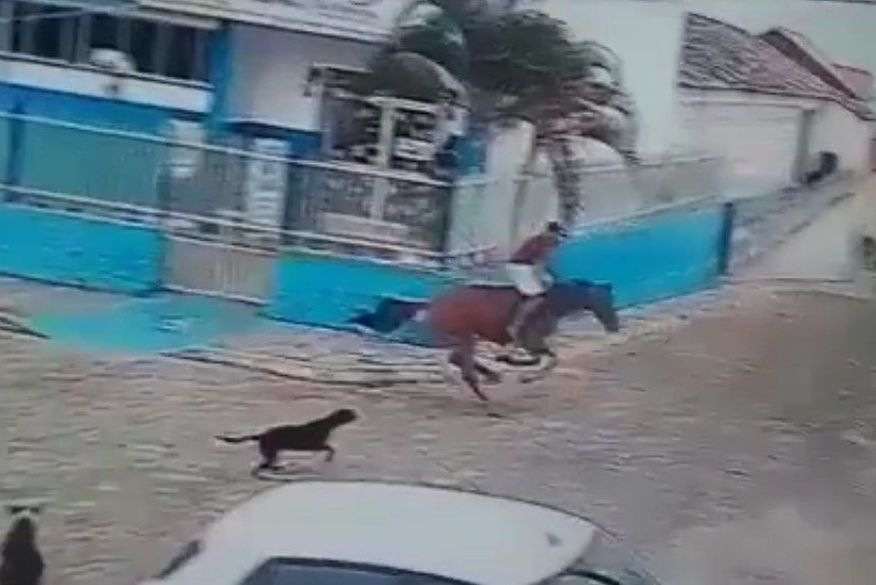 Homem morre após cavalo desgovernado se chocar contra muro na PB