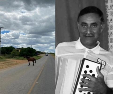 Sargento da PM morre após cavalo atravessar pista e atingir moto na PE 275